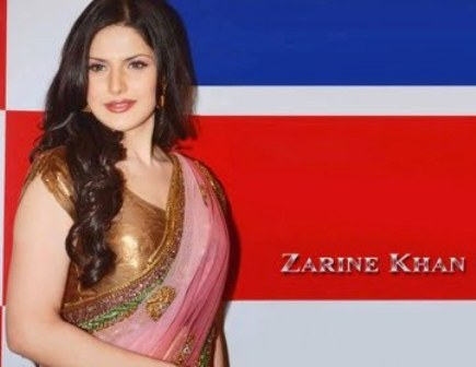 Zarine Khan Hot Wallpapers Sexy Zarine Khan Hot Photos Pictures amp Images gallery pictures