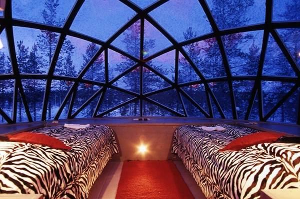 suasana-dalam-hotel-igloo
