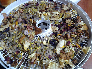 Dehydrated pedals. Step 4:  Run the dehydrator (temperature and times may vary, but continue until pedals are crunchy).