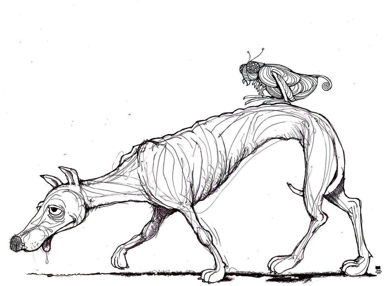 Refranero antiguo Perro flaco