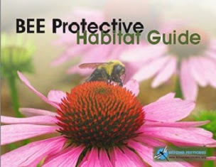 Bee Planting Guide