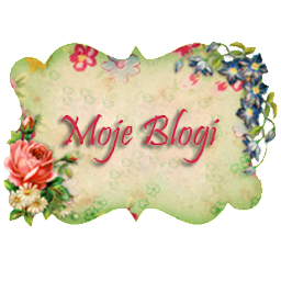 Moje Blogi