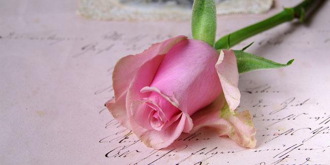 10 Kata Mutiara Cinta Paling Romantis