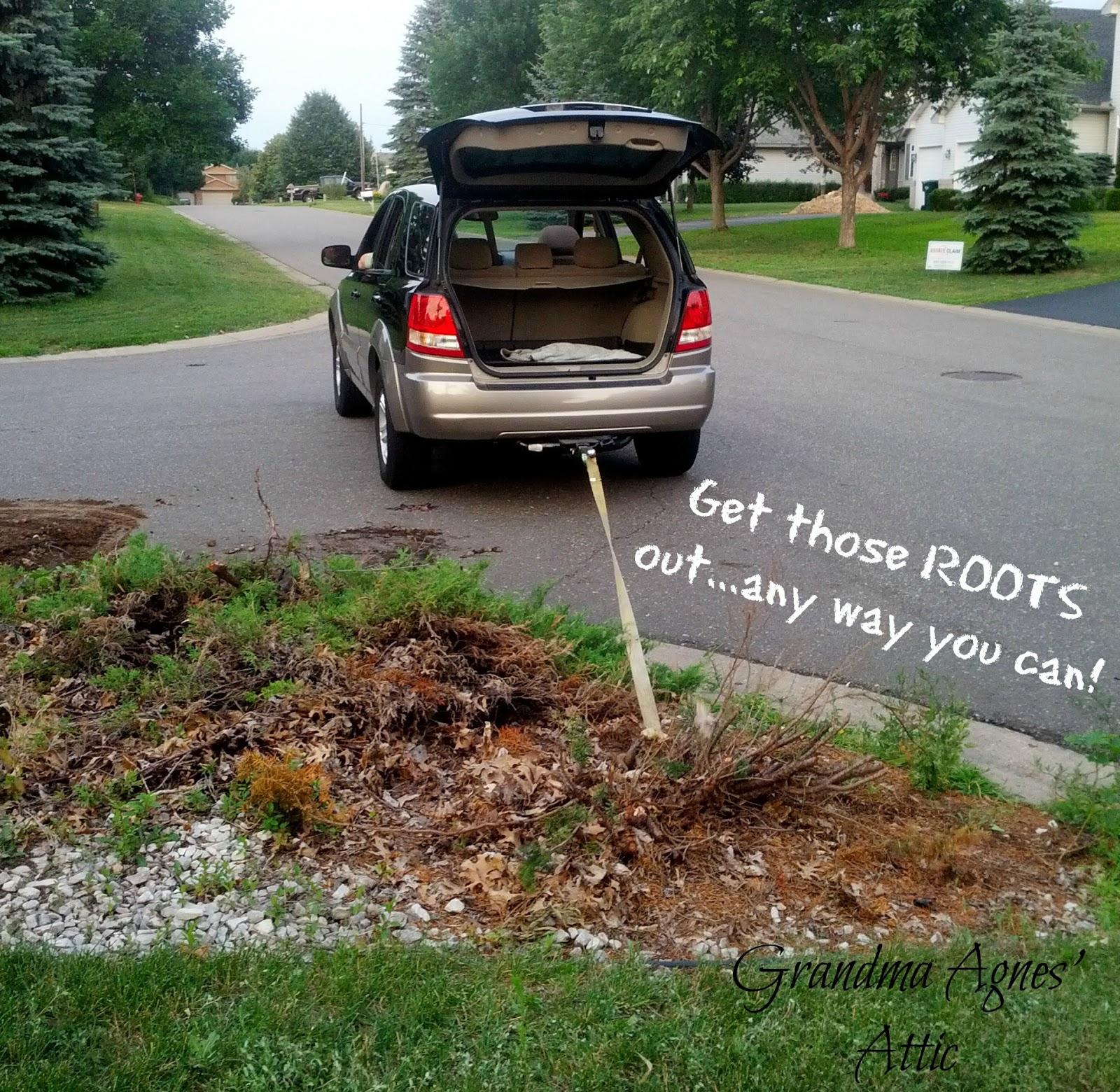 Grandma Agnes39 Attic Kids Bus Stop Landscaping Make Over