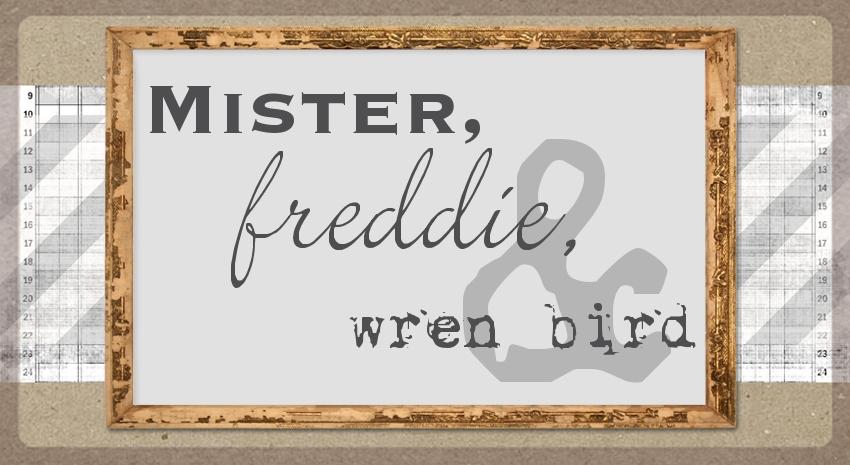 Mister, Freddie, & Wren Bird