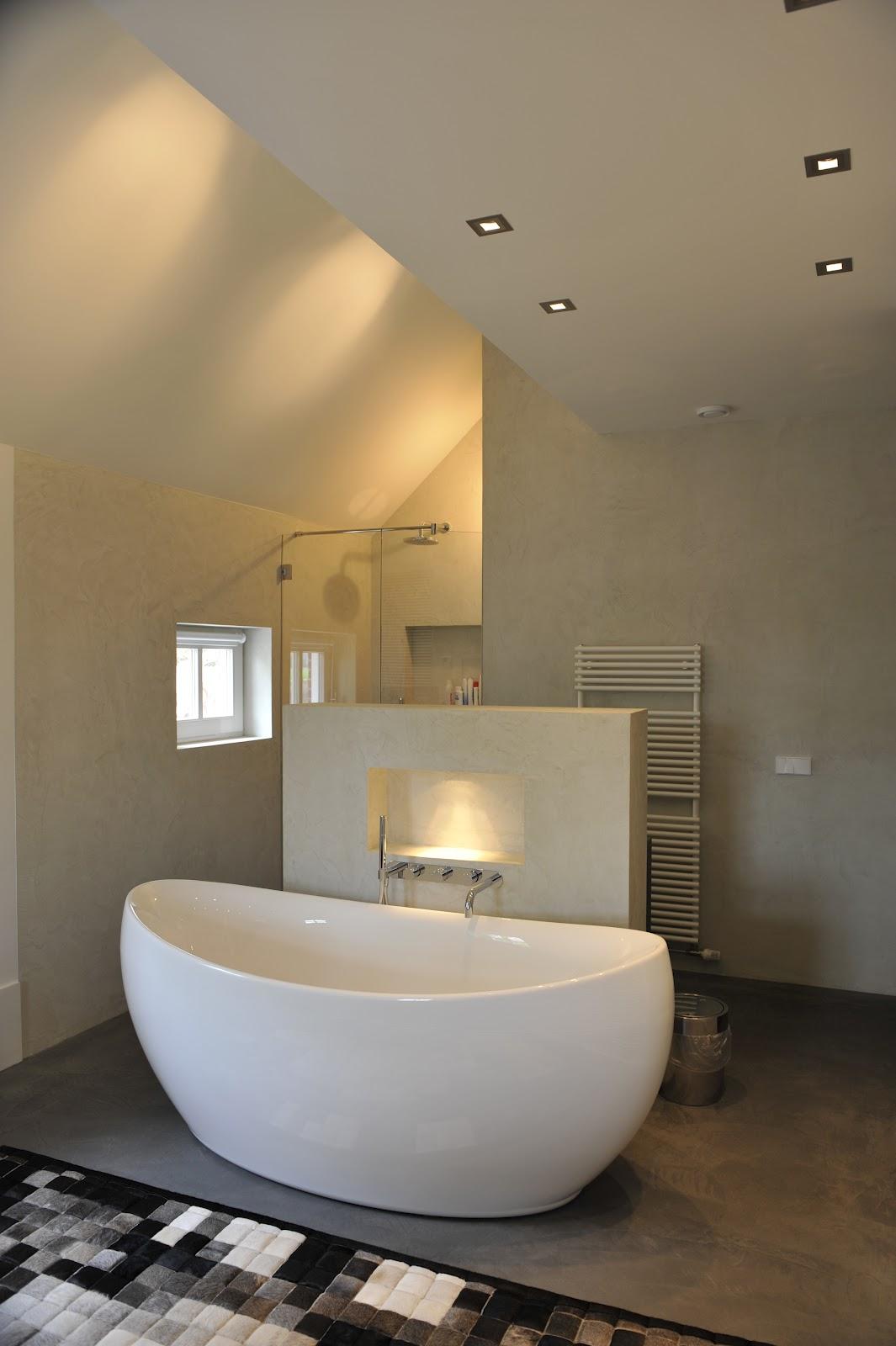 ronhuiseninterieur.nl: Een badkamer zonder tegels.