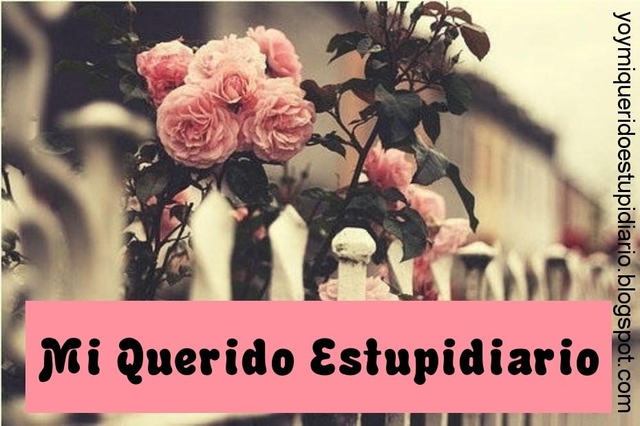 Mi Querido Estupidiario ♥