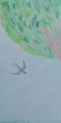 drzewo, rysunek, ptak, ptaki, zwierzę