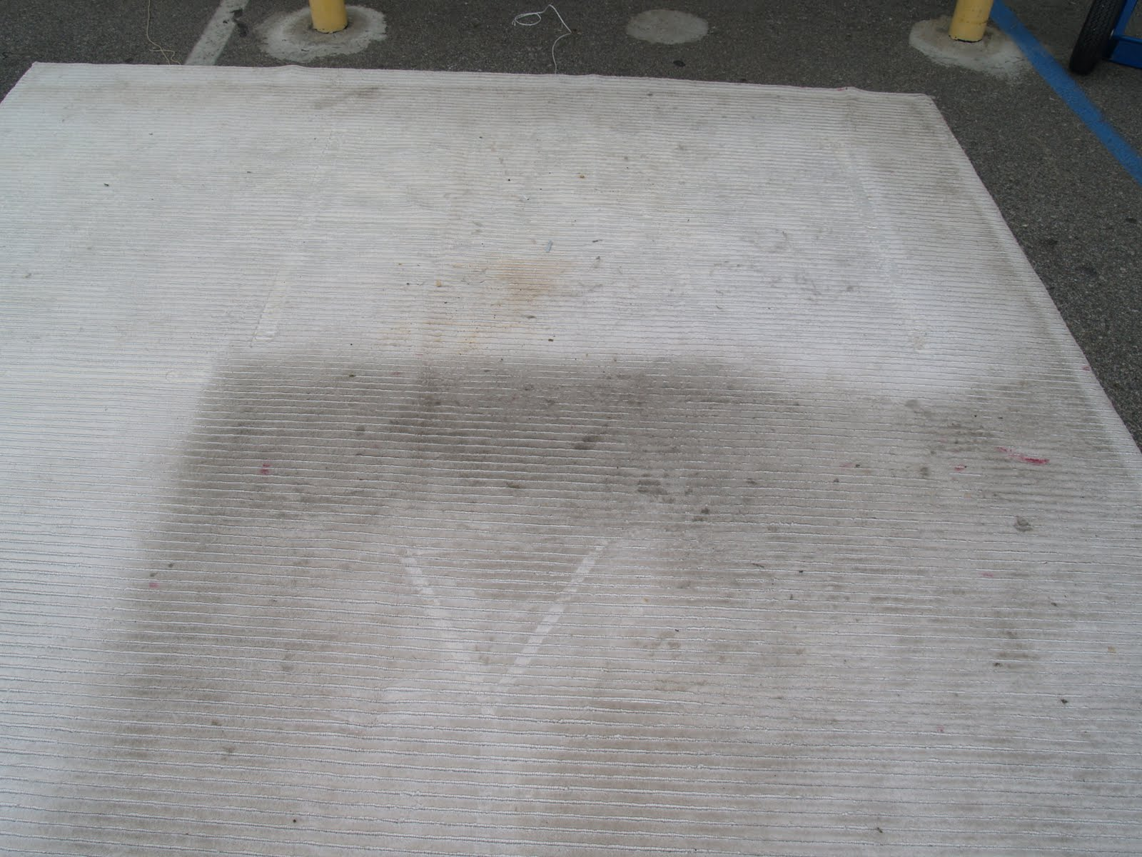 Silk Shag Rug Cleaning u0026 Stain Removal