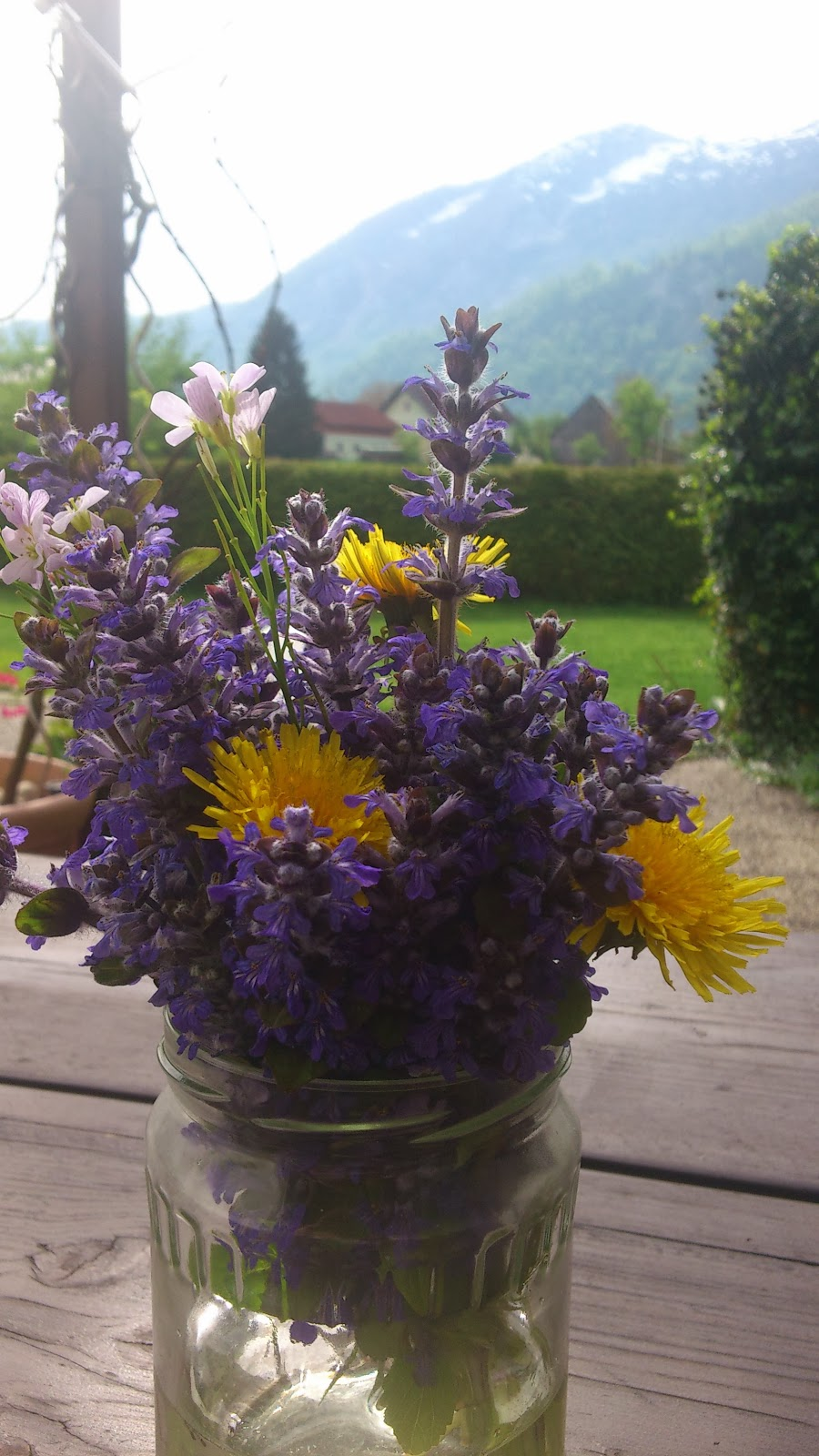 Alpine spring flowers in the heart of the salzkammergut austria the growth is so vigorous during this time that even just in the rosenhof garden different varieties of flowers come and go almost on a weekly basis mightylinksfo