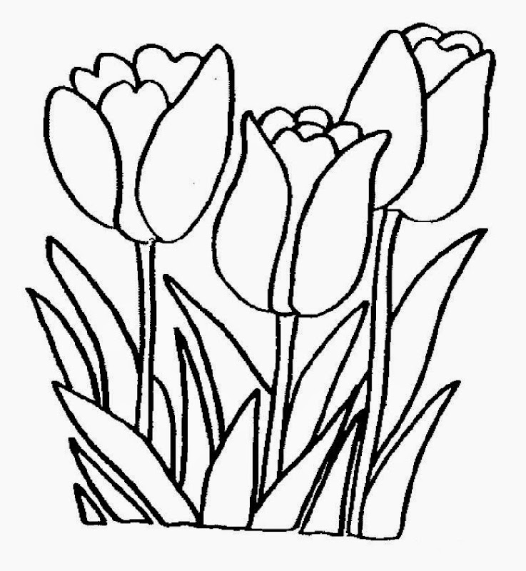 Spring Flowers Coloring Pages Realistic Colorings Net