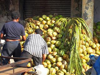 гора кокосов