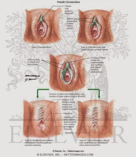 aarhus luksusmassage stor klitoris