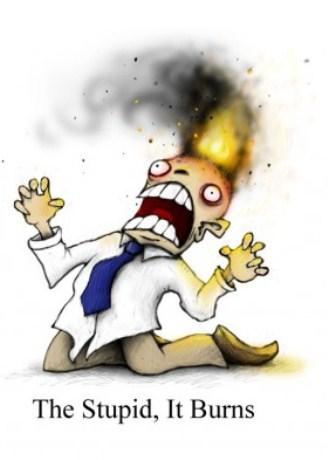 how stupid burns