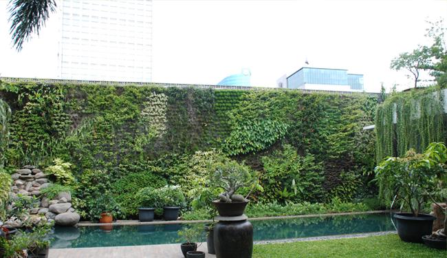 http://1.bp.blogspot.com/-y4RbU-jiPrE/TzNqQoWPmCI/AAAAAAAACiA/poYBnBoeOho/s1600/vertical+garden+indonesia.jpg