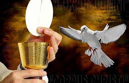 !!! Mi Paz os Dejo. Mi Paz os Doy !!!. Blog Semillas de Dios.