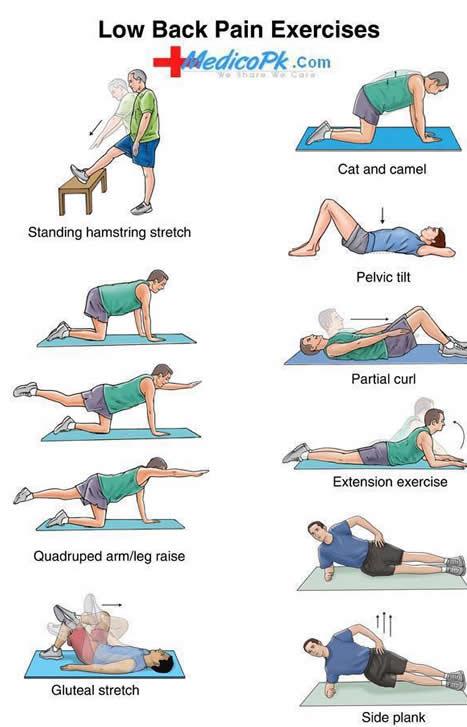 physio exercise 11 blood analysis