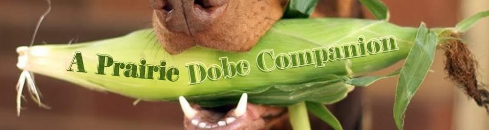 A Prairie Dobe Companion