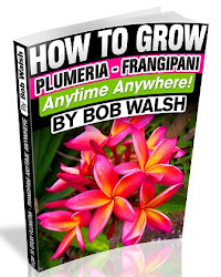 Plumeria Care Book For Kindle