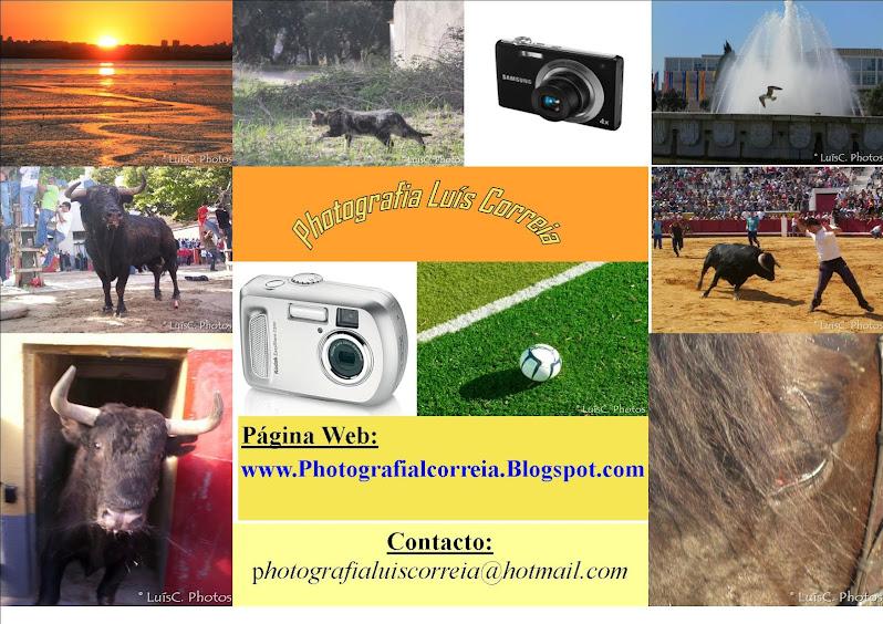 (c) PHOTOGRAFIA LUÍS CORREIA