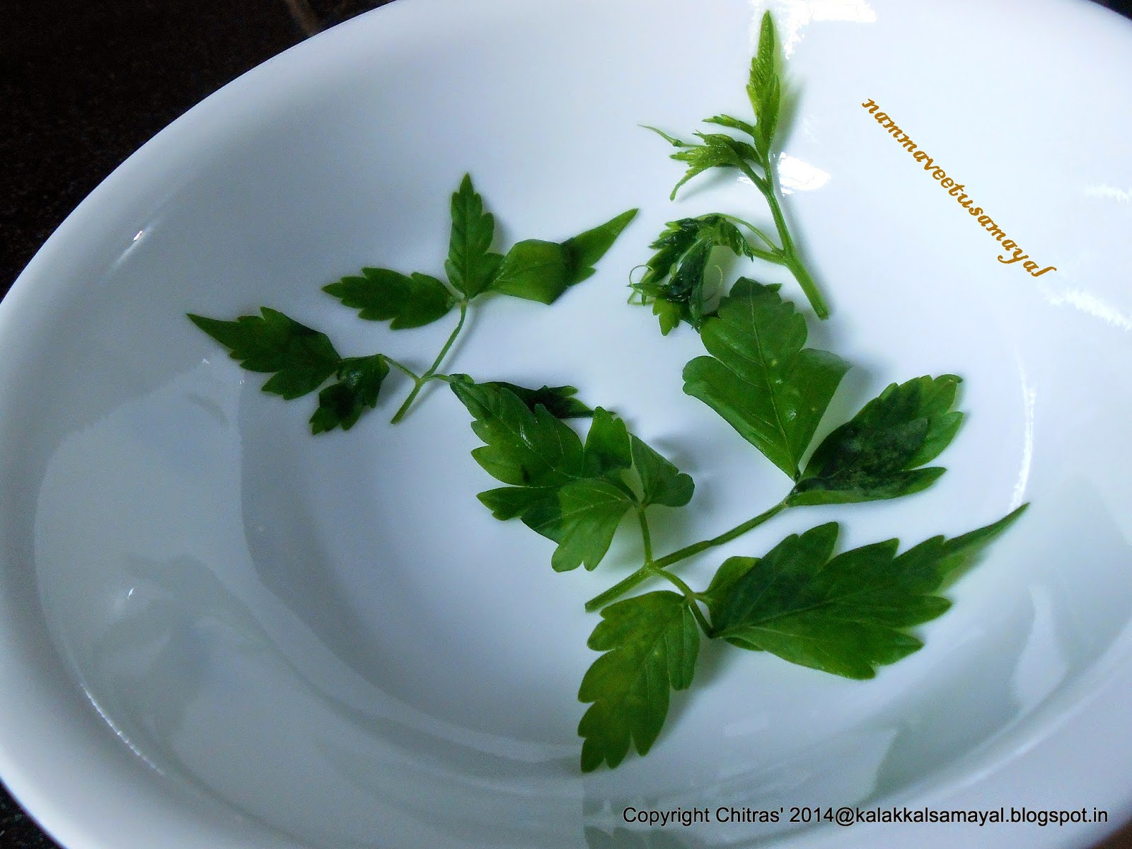 Mudakkattan Leaves [ Balloon vine leaves ]