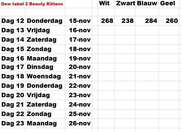 Gew tabel 2 Kittens van Beauty