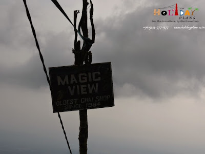 Magic view point