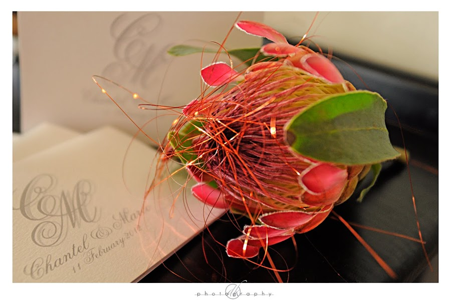 DK Photography Ch2 Sneak Peek to Marco & Chantel's Wedding in Fraaigelegen in Paarl  Cape Town Wedding photographer