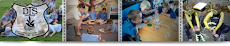 Dargaville Intermediate School Website