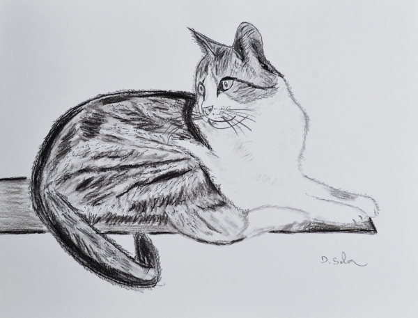 Art et glam peindre et dessiner des chats - Dessiner des animaux ...