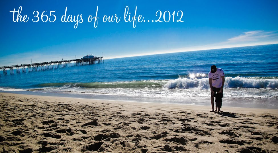 365 days of our life in 2012