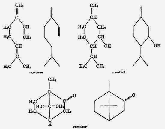 Abbreviated formulas of Terpenes