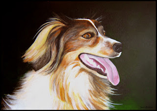 Original Pet Portrait Artwork