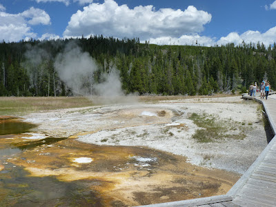 geyser area