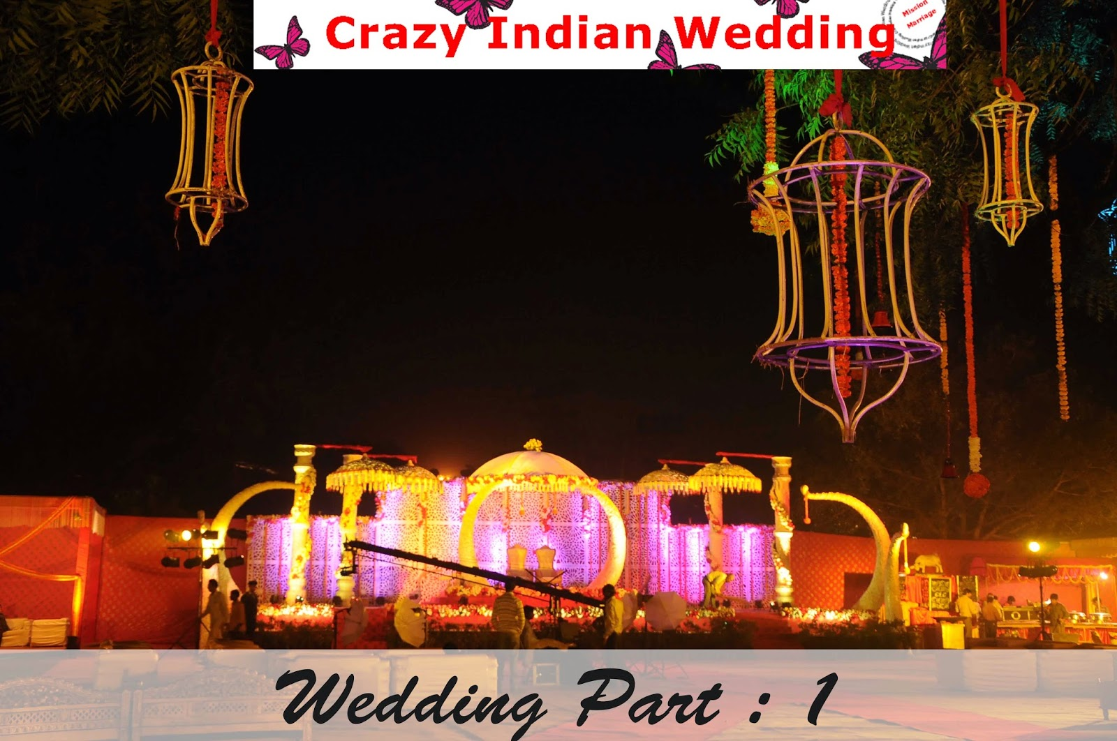 Crazy Indian Wedding grand indian wedding
