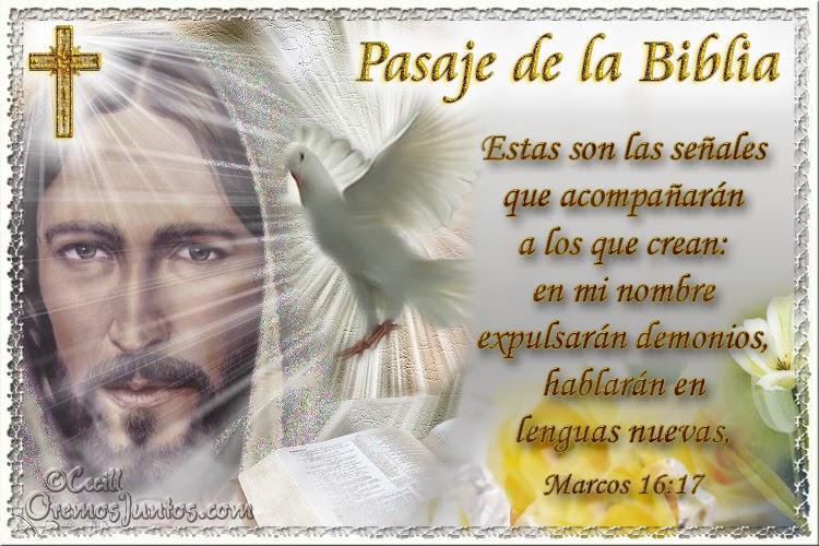 Vidas Santas: Santo Evangelio según san Marcos 16:17