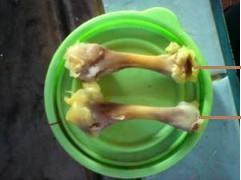 Moh Makan Sate Emas Kajang....