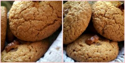 Biscotti con avena e noci