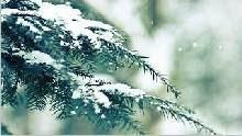 Sfondo invernale-05