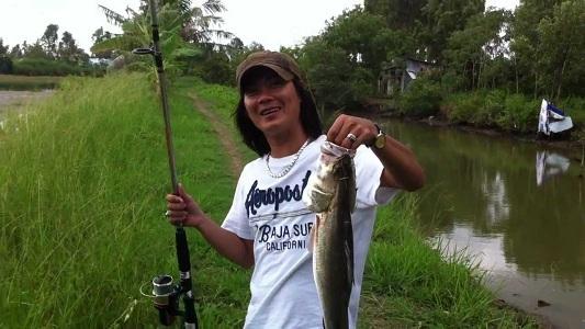 Hướng dẫn câu cá vược (chẽm) để đạt hiệu quả nhất