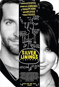 FILME: O Lado Bom da Vida