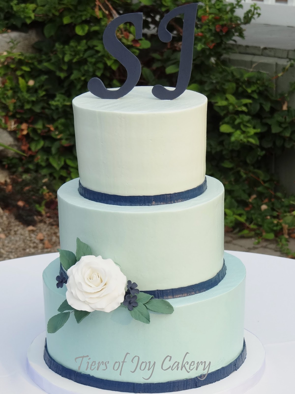 Tiers Of Joy Cakery Mint And Navy Wedding Cake