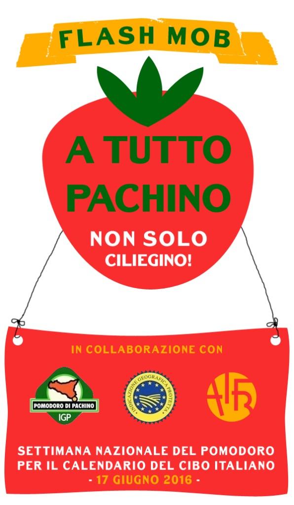 Pachino contest.