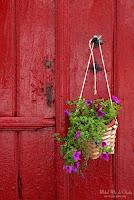 Flores en puerta