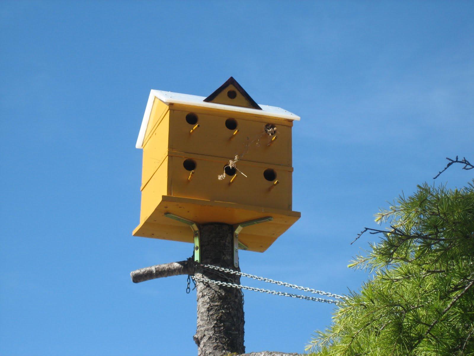 Albergue para los pájaros..