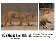 Today's sketch of the day was inspired by what I saw when I visited MGM . (sm mgm lion habitat sketch of the day final)