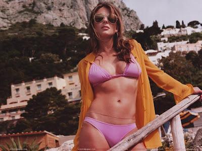 Elizabeth Hurley Wallpaper in Bikini