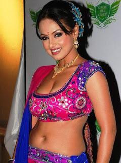 sana khan hot images in a saree