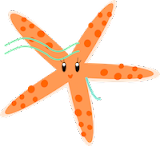 starfish pattern: