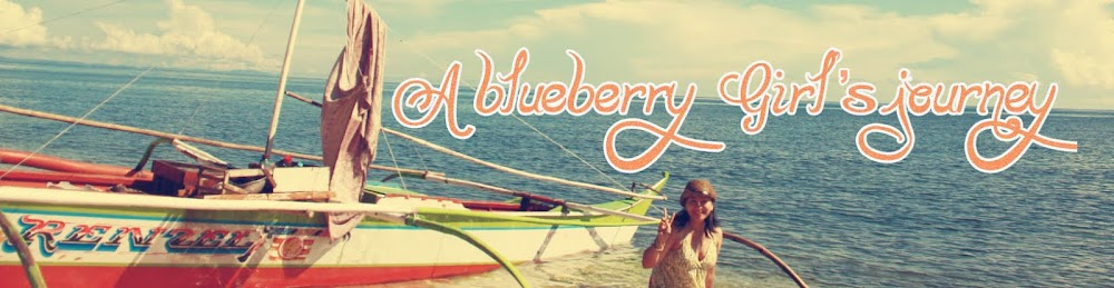 a blueberry girl's journey..